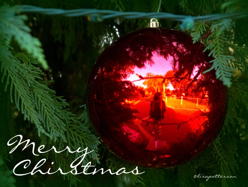 I hope everyone has a very Merry Christmas, happy holidays and what every you may celebrate, I hope it brings you happiness and cheer