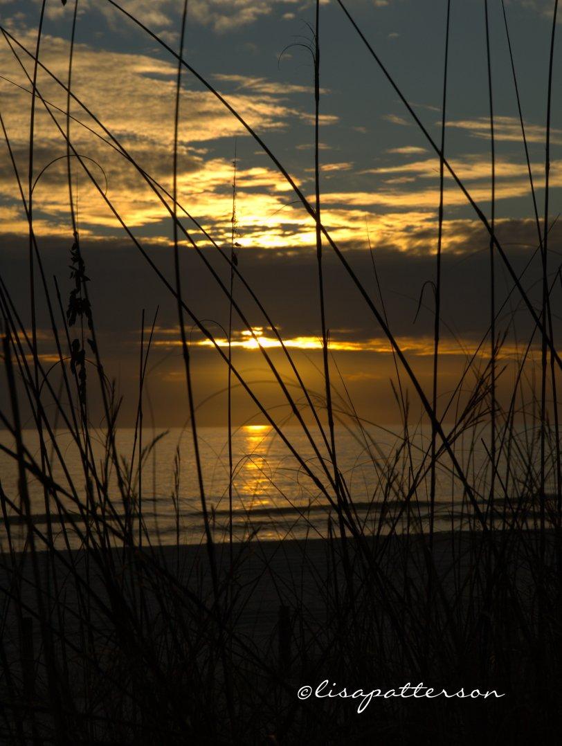 December - a beautiful evening sunset