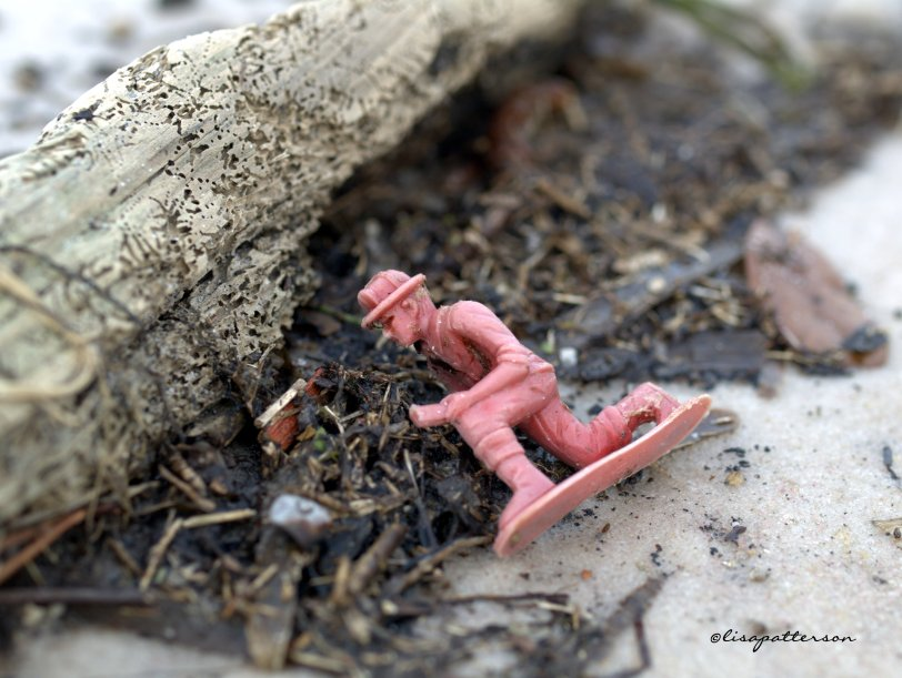 lost toy washes up