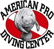picture from american pro diving center website